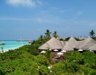 tur na maldivy juzhnyj male atoll 76 616 rub chel - Тур на Мальдивы Южный Мале Атолл 76 616 руб. чел.