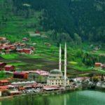 Тур в Абхазию Гагра 14 540 руб. чел.
