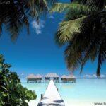Тур на Мальдивы Мале 63 916 руб. чел.
