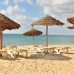 Тур в Тунис Хаммамет 30 172 руб. чел.