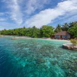 Тур на Мальдивы Южный Мале Атолл 72 872 руб. чел.