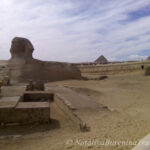 Тур в Египет Каир 49 210 руб. чел.