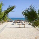 Тур в Тунис Хаммамет 25 448 руб. чел.