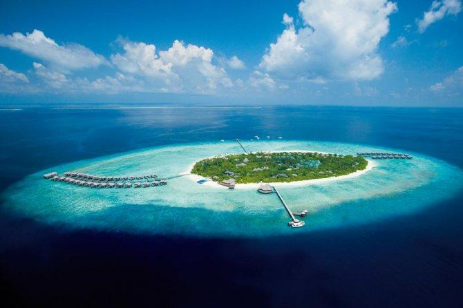tur na maldivy ari atoll 69 338 rub chel - Тур на Мальдивы Ари Атолл 69 338 руб. чел.