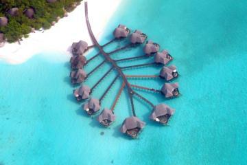 tur na maldivy ari atoll 75 952 rub chel - Тур на Мальдивы Ари Атолл 75 952 руб. чел.