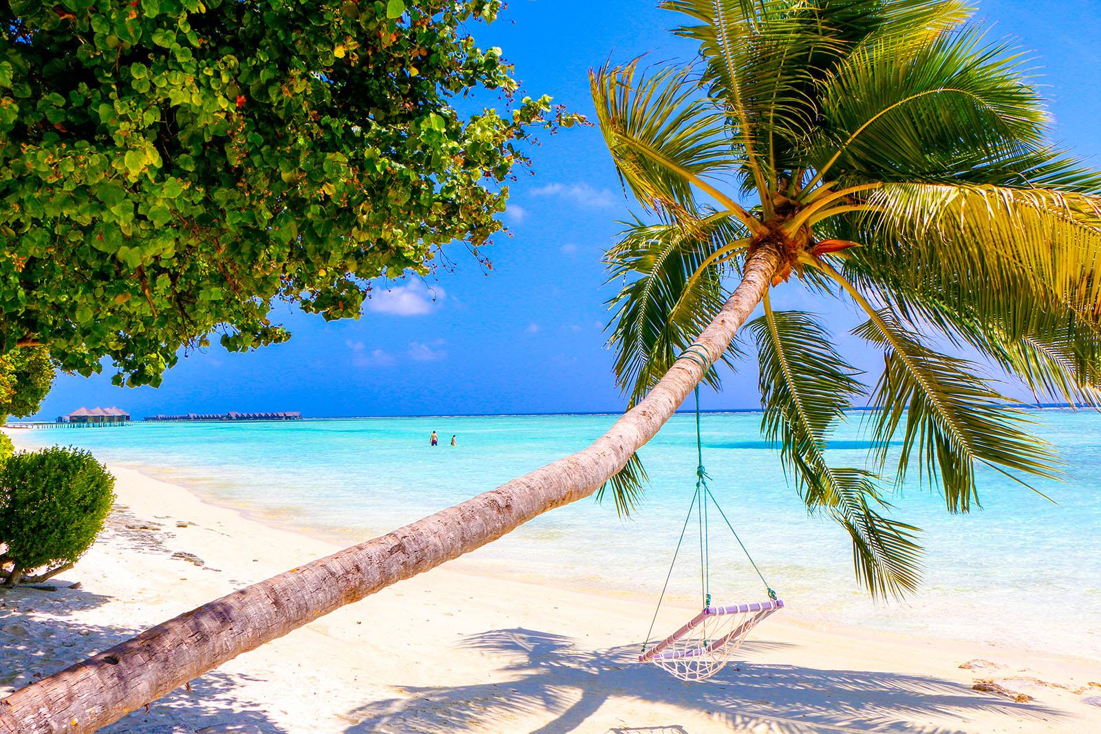 tur na maldivy juzhnyj male atoll 64 885 rub chel - Тур на Мальдивы Южный Мале Атолл 64 885 руб. чел.