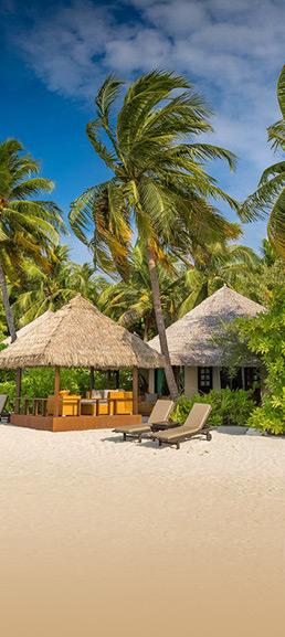 tur na maldivy juzhnyj male atoll 84 860 rub chel - Тур на Мальдивы Южный Мале Атолл 84 860 руб. чел.