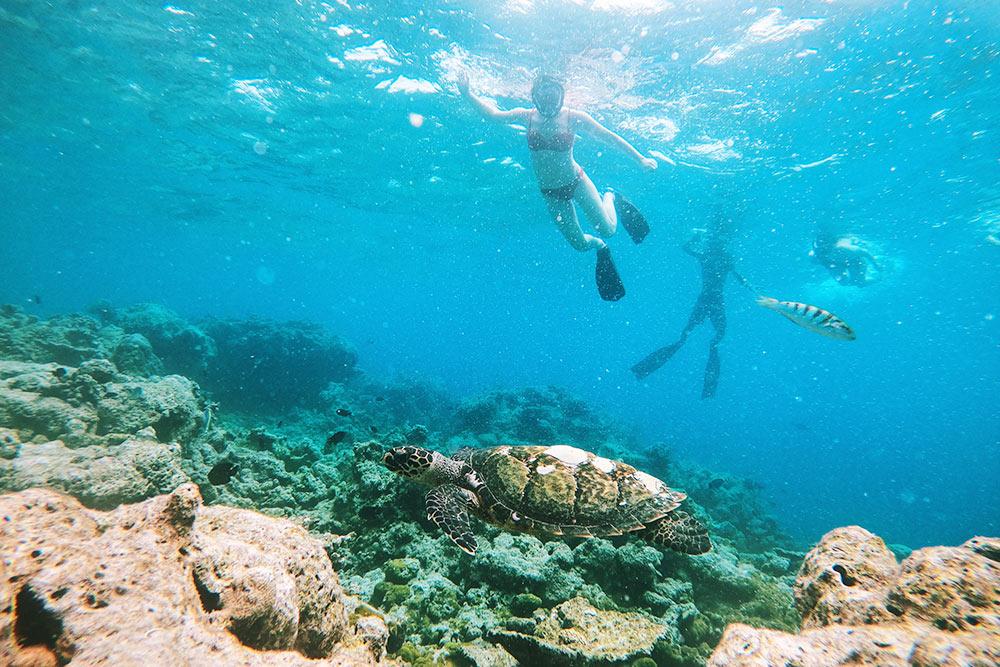 tur na maldivy male 78 283 rub chel - Тур на Мальдивы Мале 78 283 руб. чел.