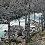 Тур в Абхазию Гагра 18 460 руб. чел.