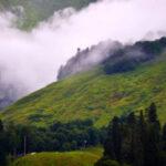Тур в Абхазию Пицунда 20 570 руб. чел.