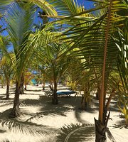 tur v dominikanu punta kana 101 564 rub chel - Тур в Доминикану Пунта Кана 101 564 руб. чел.